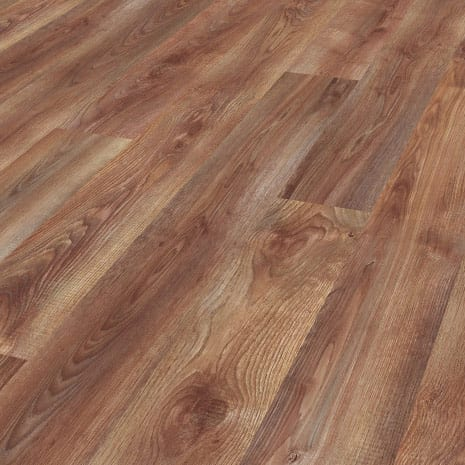 8236 hrast Rocky Mountain Oak | MegaKOP